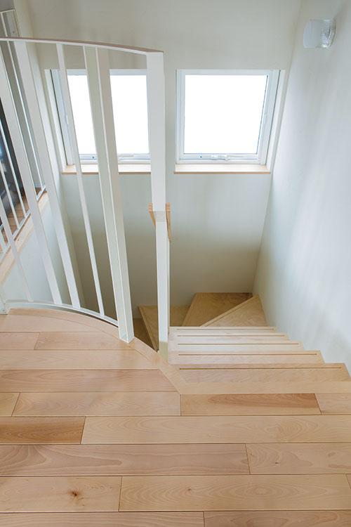 表情豊かなカバ材のフロアからつながる階段には、シラカバの間伐材で作った合板を使用